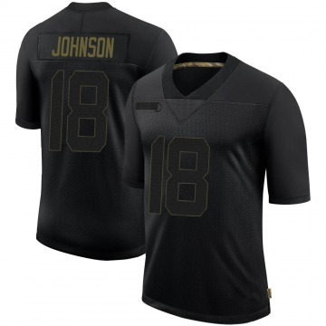 Youth Nike Tampa Bay Buccaneers Tyler Johnson Black 2020 Salute To Service Jersey - Limited